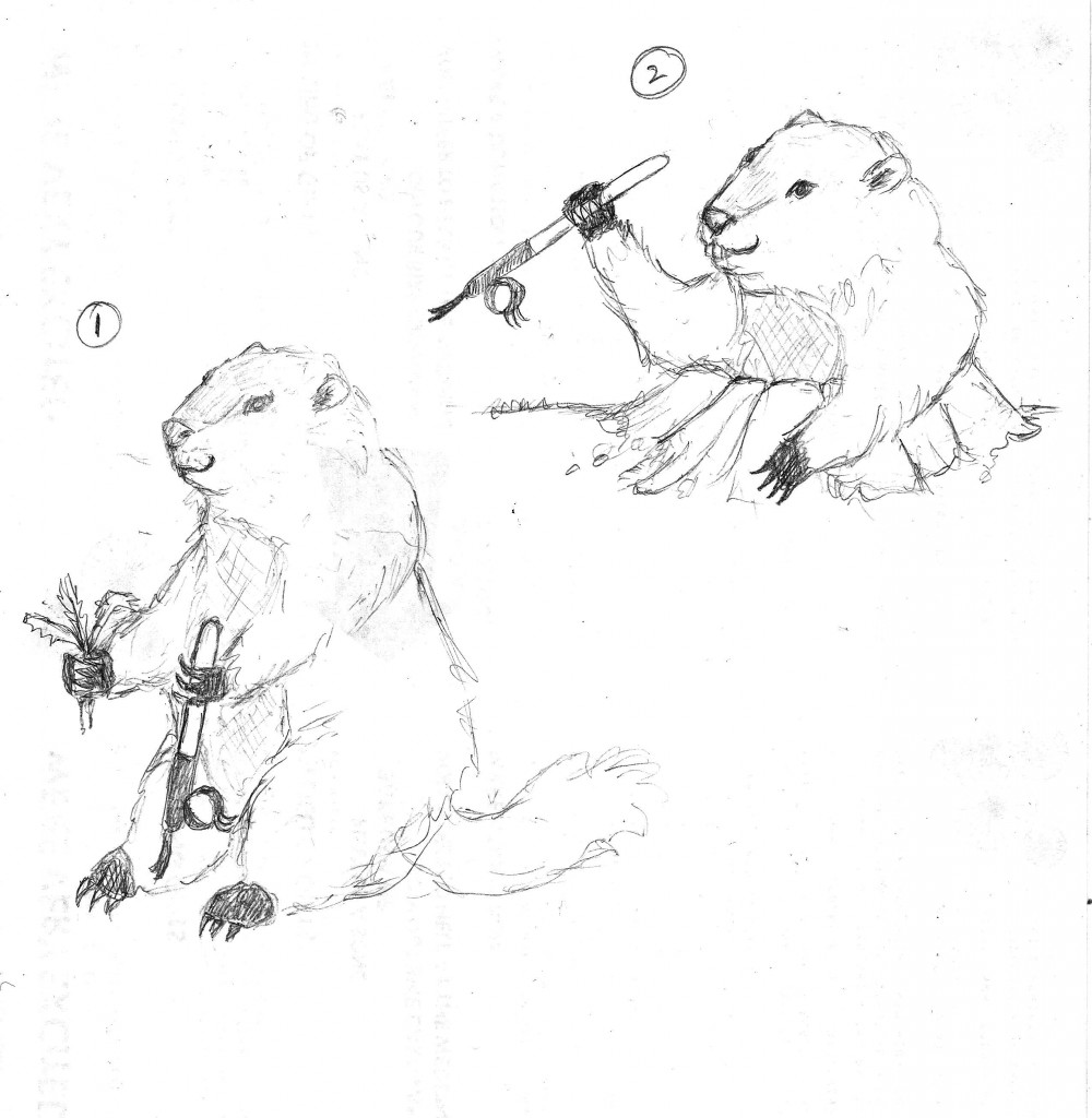 Gus Groundhog sketches 1 and 2