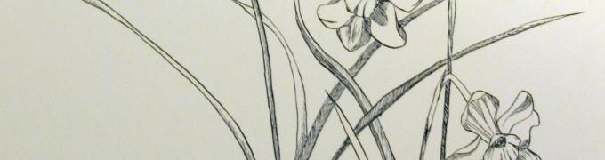 Illustrate 2012: March